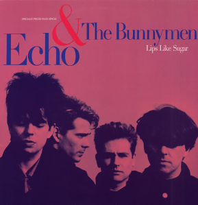 Echo & The Bunnymen_ Singles & B-Sides