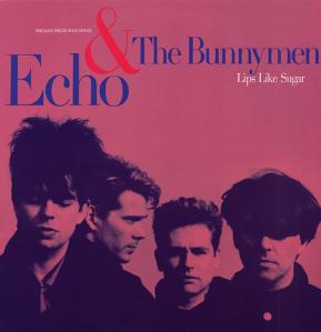 Echo & The Bunnymen_ Singles & B-Sides